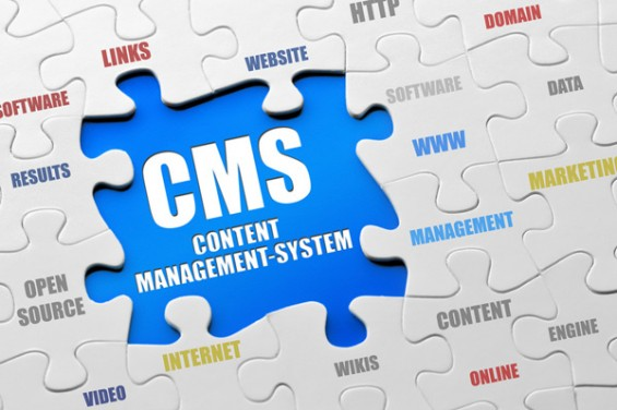 content-management-systems-565x376